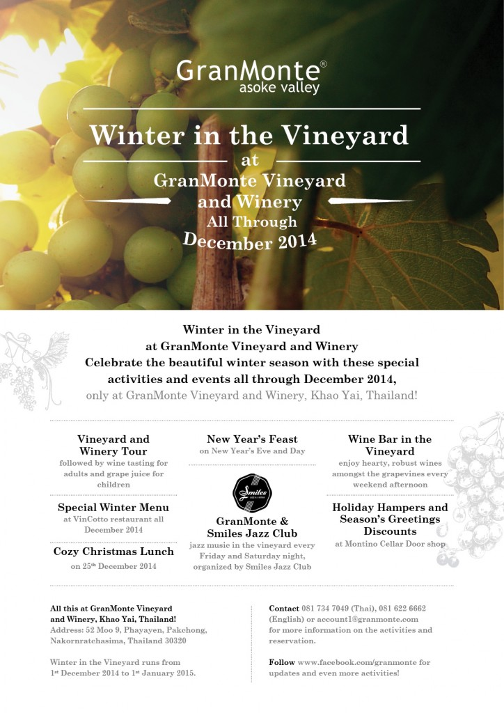Winter in the Vineyard Poster