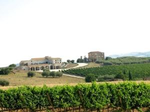 Sicily Bagliodel Cristo di Campobello 2015 July 3 - 293