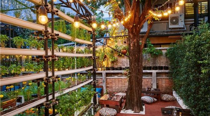 Haoma garden 2