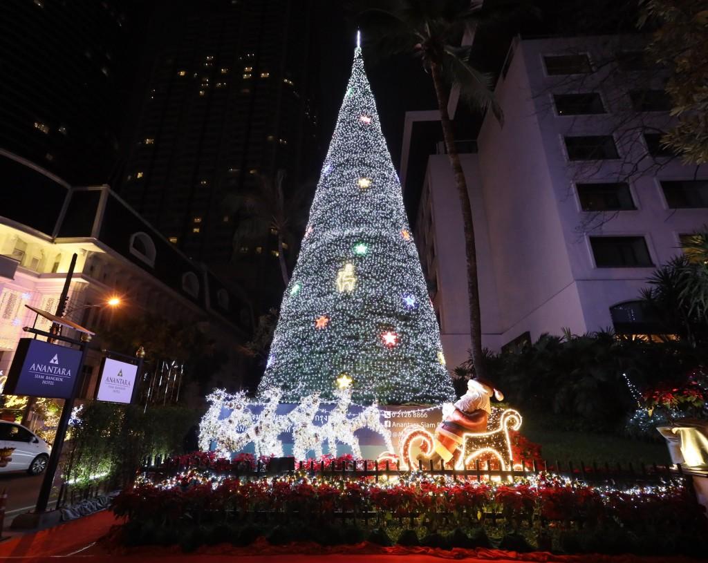 Xmas Tree Lighting 2
