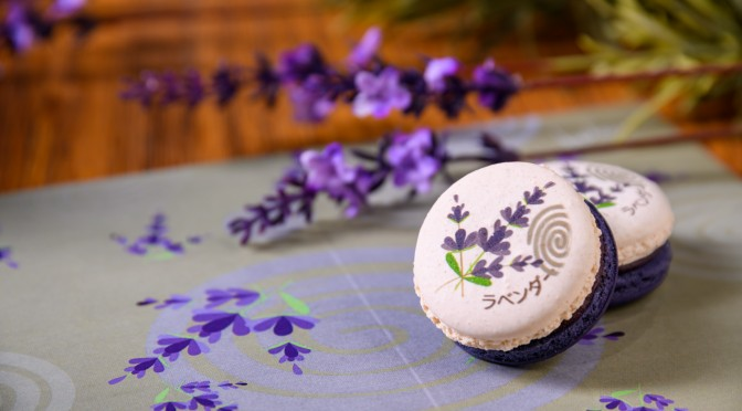 Afternoon Tea Picnic in Lavender Fields_8